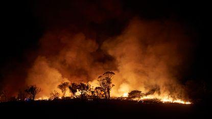 Na helse branden in Australië ook bij ons grotere kans op bosbranden