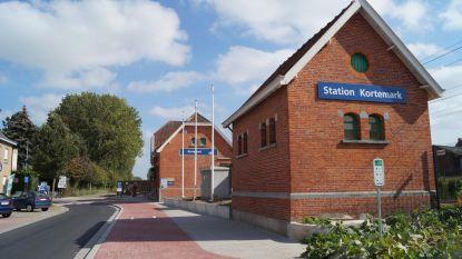Fietsdieven aan station