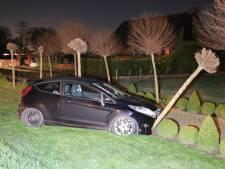Automobilist gewond na botsing tegen boom bij Vogelwaarde