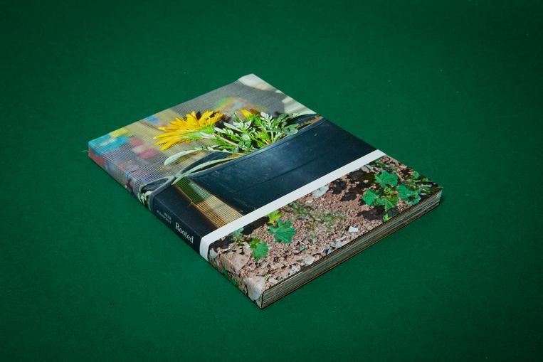 Henk Wildschut: Rooted. Beeld