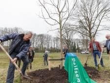 De schop de grond in voor vijf notenbomen van oud Dalfser burgemeester Han Noten