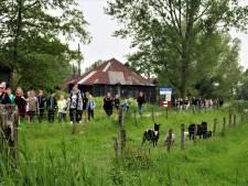 Avondvierdaagse in Hasselt van start met 600 deelnemers