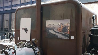 Drie Beringse fotografen exposeren met indrukwekkende natuurfoto's op unieke locatie