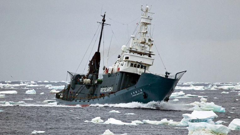 Een Japans harpoenschip Beeld EPA