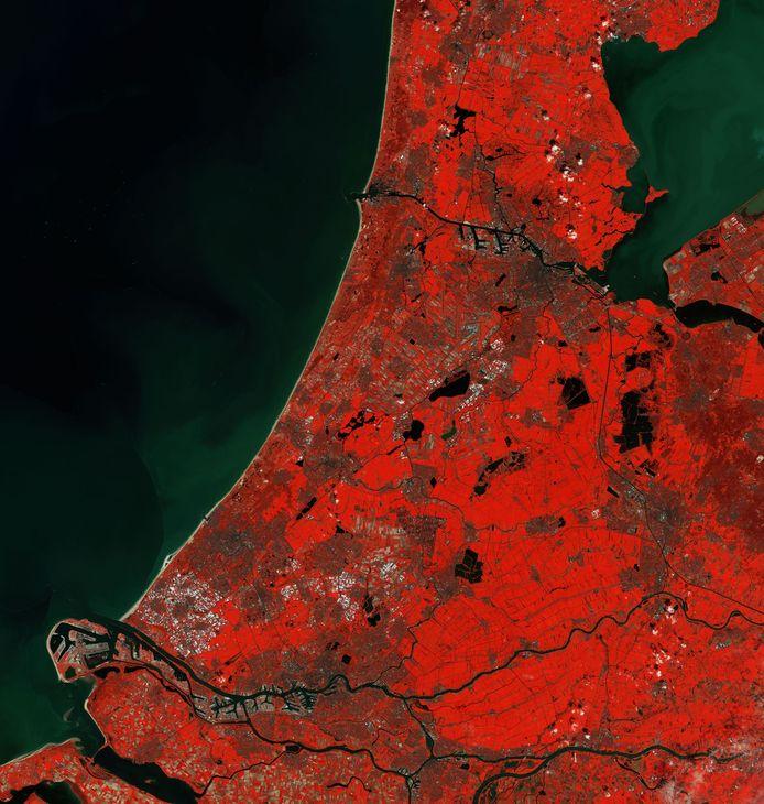 Een opname van Nederland gemaakt door een satelliet van Copernicus. Het beeld is zo bewerkt dat de vegetatie felrood oplicht