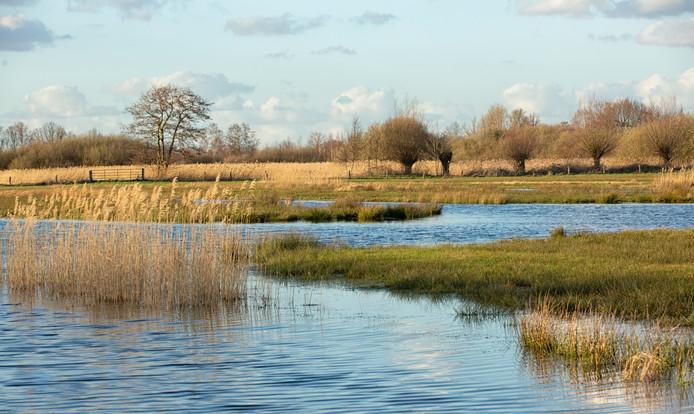 Natuurgebied de Matjens tussen Achtmaal en Nieuwmoer.