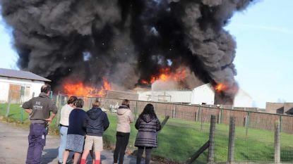 """Brand verwoest loods metaalbedrijf, mogelijk asbestgevaar. """"Mijn levenswerk is in enkele minuten vernield"""""""