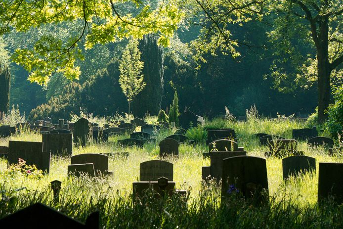 De Arnhemse begraafplaats Moscowa op archiefbeeld, foto ter illustratie.
