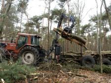 Kappen bos bij Haarle en Nijverdal is afgerond