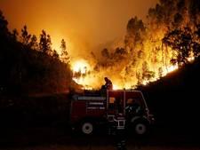 Portugese brandweer: Bosbranden werk van criminelen