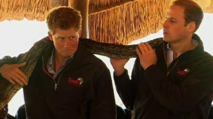 Hebben William en Harry ruzie door Meghan Markle?