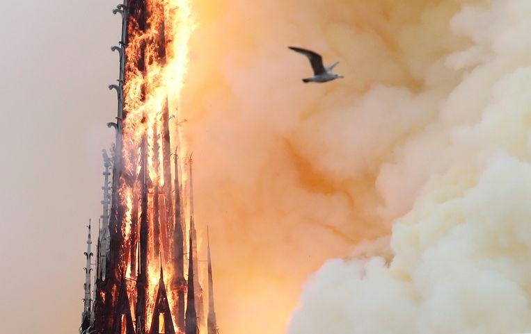 De torenspits van de Notre Dame gaat in vlammen op. Beeld REUTERS