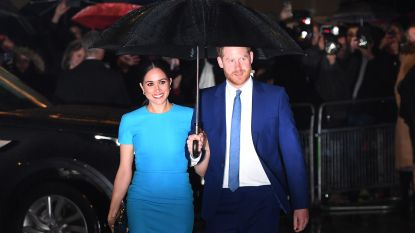 Harry en Meghan 'breken in' op videomeeting