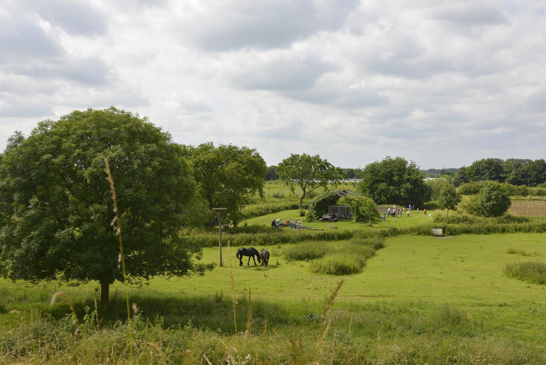 Het grootste landschapspark van Nederland: Park Lingezegen, met wandel- en fietsroutes, voedselbossen, plassen en moerassen.