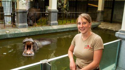 """Op pad met Lynn, verzorgster van de nijlpaarden in de Antwerpse Zoo: """"Ik zíe het als ze slechtgezind zijn"""""""