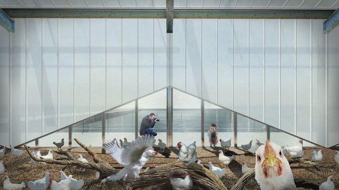 De geplande boerderij is met een capaciteit voor 7.000 kippen aanzienlijk kleiner dan de gemiddelde kippenboerderij in ons land.