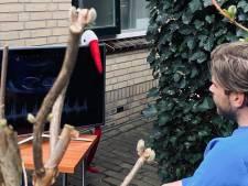 Verloskundigenpraktijk in Twente zet tv buiten: 'Kan partner tóch live echo zien'