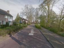 Drie ton voor aanpak boomrijke straten in Rijen die met wortelproblemen kampen