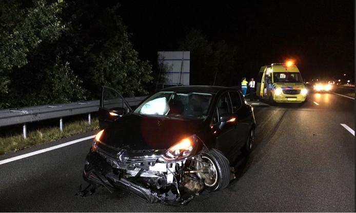Auto rijdt 14 zwijnen dood op de A2.