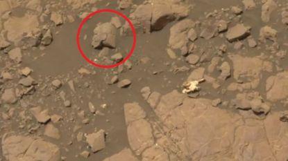Deze man heeft 'bewijs' voor buitenaards leven op Mars gevonden