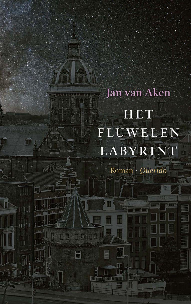 Het fluwelen labyrint, Jan van Aken Beeld