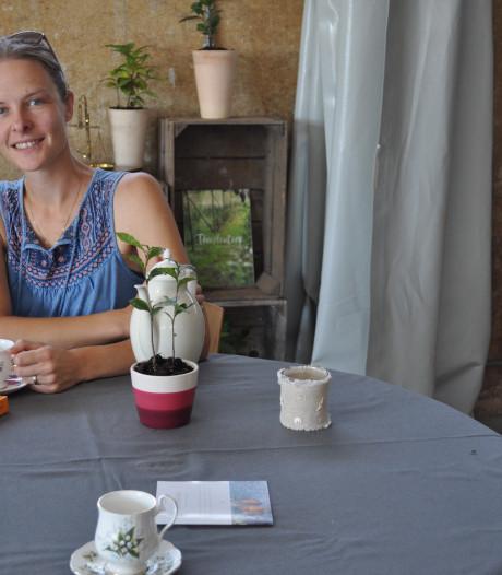Enige theeplantage van Nederland wil steeds groter worden