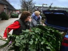 De kerstboom staat al weken op een nieuwe eigenaar te wachten