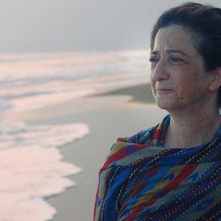 'Ik probeer de stilte te doorbreken': levert deze film ons land een Oscar op?