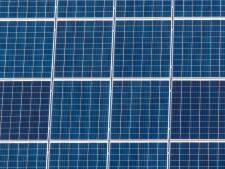 Alle vertrouwen in komst Roosendaalse zonneparken, ondanks alle hobbels: 'Het is allemaal nog vrij nieuw'