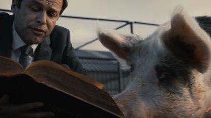 GAIA pleit met tv-spot voor verankering dierenwelzijn  in Grondwet