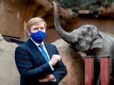 Koning Willem-Alexander kijkt bij olifanten en rode panda's in Diergaarde Blijdorp