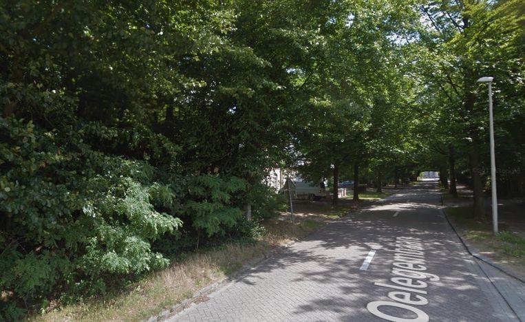 De Oelegembaan aan het Gemeentelijk Speelbos in Zandhoven.