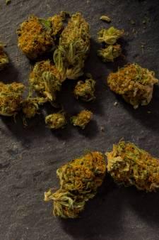 Une fillette de sept ans achetait de la drogue pour sa mère