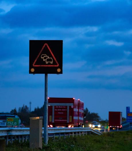 File tussen Emmeloord en Zwolle opgelost