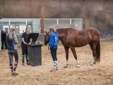 Genieten op ponykamp in Soerendonk