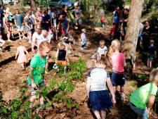 Eieren zoeken in bos op Hellendoornse Berg