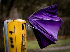 Windstoten van 110 kilometer per uur verwacht in provincie Utrecht
