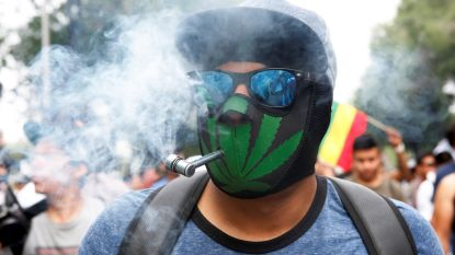 Wietverbod verdwijnt in steeds meer landen: ook Mexico legaliseert cannabis