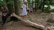 Provincie lanceert nieuwe kinderwandelingen