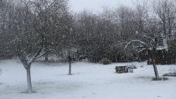 Eerste sneeuwvlaag trekt over het Hageland