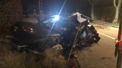41-jarige man overleeft crash tegen boom niet