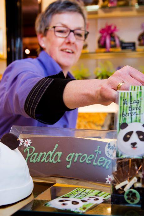 Geen gedroomde rijen, maar malaise in Ouwehands: 'We kennen die panda's nu wel'