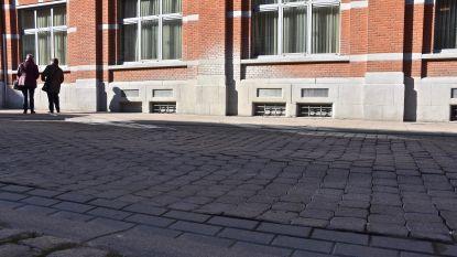 Raadslid klaagt wegverzakkingen in Molenstraat nog maar eens aan