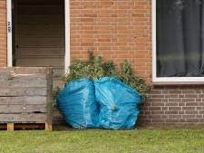Hennepkwekerij met zo'n 200 planten aangetroffen in woning in Kaatsheuvel