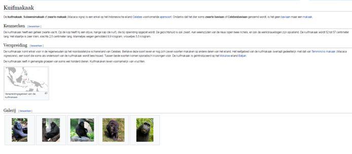 De 'aapselfie' staat op de Wikipediapagina van zijn soort de Kuifmakaak