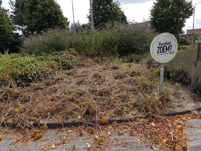 De ravage op de bijenrotonde aan de Gebrande Hoefstraat in Rucphen