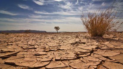 OPINIE. De klimaatcrisis is hier: stop met je schuldig te voelen en plan je toekomst