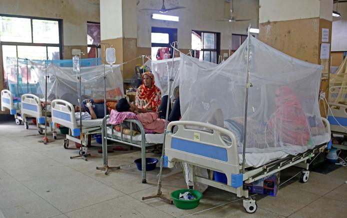 Het aantal Nederlanders met dengue ligt dit jaar twee keer zo hoog als vorig jaar