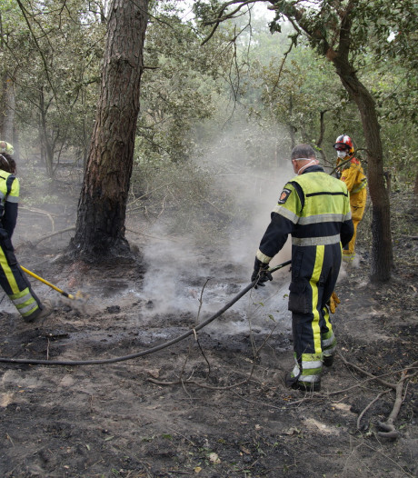 Brandweer klaar met blussen bij Loonse en Drunense Duinen, maar gaat nu ondergronds te werk