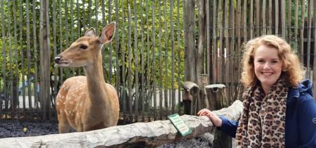 Saxion-studente mikt met enquête over Tierpark Nordhorn ook op Nederlanders